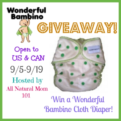 Wonderful Bambino Cloth Diaper giveaway
