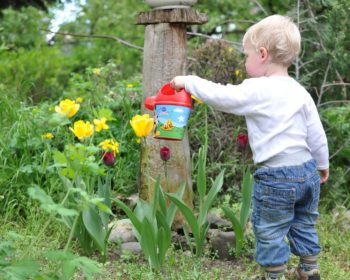 Teaching Your Kids to Garden the Easy Way