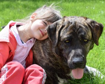 5 Tips for Keeping Your Children Safe When You Have A Dog