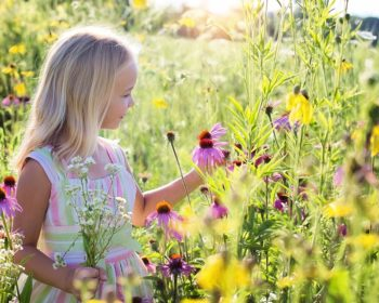 Girl picking flowers in the summer