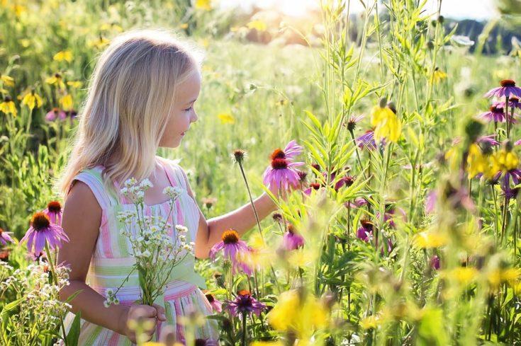 Girl picking flowers in the summer