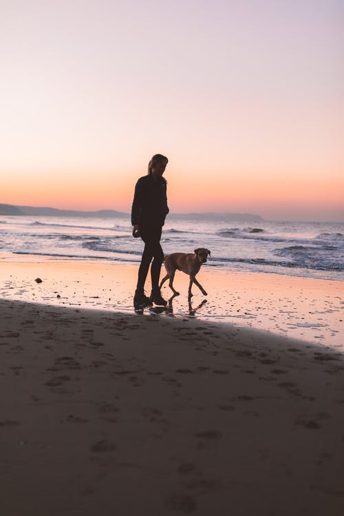 lady and dog walking on beach