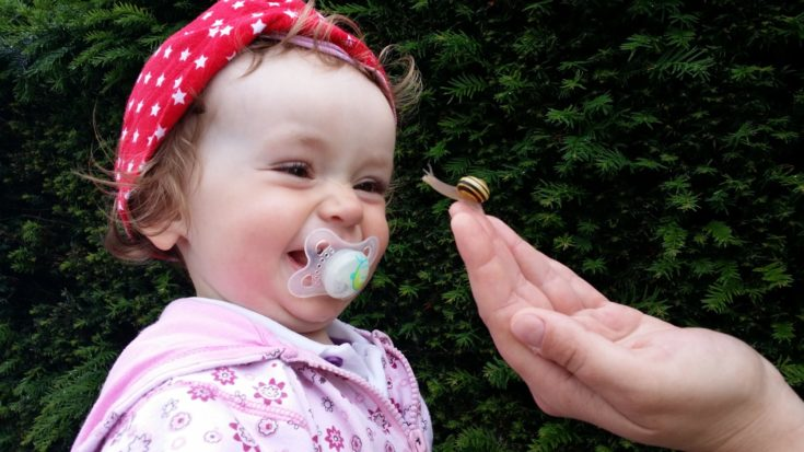 introducing a pacifier